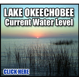 Bass Fishing on Lake Okeechobee - Water Levels