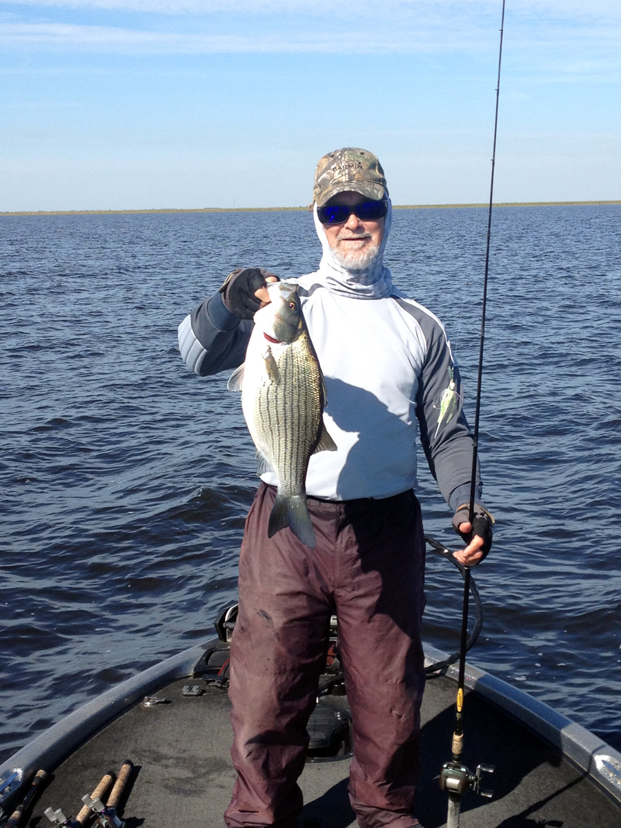 Fishing lake okeechobee archives page 54 of 104 for Bass fishing report